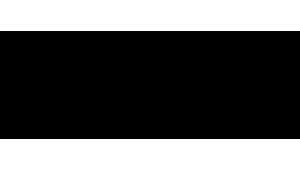 Arts Council of Ireland - Logo - Funding Festivals - Black and Whitev